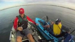 Yakking with Dolphins in a Pro Angler, Outback and Sport